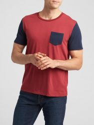 Camiseta GAP Colorblock