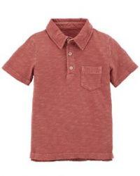 Camisa Polo Carter